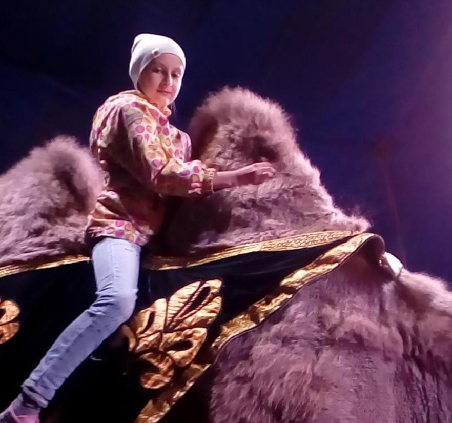 Дрессированные животные на день рождения в Москве и Подмосковье